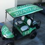 Custom-golf-carts-hawaii-002