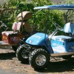 custom_golf_carts_hawaii5