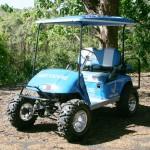 custom_golf_carts_hawaii7